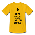 The Harlem Shake Tribute to 3D Games
